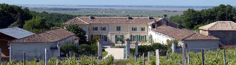 Our Bed & Breakfast is in the middle of Cognac vineyards, near the Gironde estuary