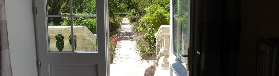 Like the cat on the stairs, enjoy the garden under the sun!